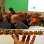 Pomidorowy marketing - ekspozycja firmy Hazera