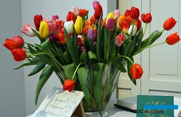 Pierwsze spotkanie z tulipanami przy wejściu na teren wystawy w Wilanowie