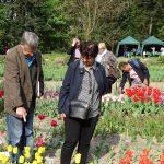 Kolekcja bylin_SGGW_konferencja ozdobne rosliny cebulwe_2018