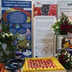 W targach w Nadarzynie uczestniczył m.in. Instytut Ogrodnictwa w Skierniewicach