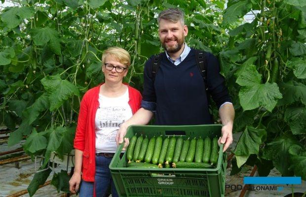 . Ewa Kaczak, kierownik produkcji w gospodarstwie w Leonowie i Marcin Piechota z firmy Monsanto prezentują owoce ogórka odmiany Quintus F1
