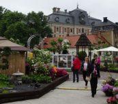 Pokazowe ogrody na rynku w Pszczynie były centralną atrakcją Dni Daisy (Daisy Days), fot. A. Cecot