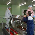 Do szklarni w firmie Agrokultura wchodzi się przez bramki dezynfekcyjne