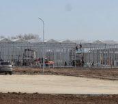 W rosyjskiej firmie Agrokultura w miejscowości Kaszira trwa budowa kolejnych szklarni