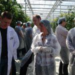 Wizyta w szklarni Ekokultury w Solnecznodolsku
