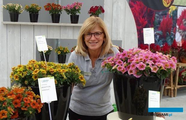 Gill Corless - prezes fundacji FlowerTrials - a zarazem menedżer ds. marketingu w przedsiębiorstwie Sakata (na jego tegorocznych pokazach- tu x Petchoa, odmiany z nowej grupy Beautical), fot. A. Cecot
