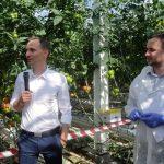 Na temat uprawy informacji udzielał Krzysztof Zdunek (z lewej), obok Mateusz Janas z firmy Enza Zaden