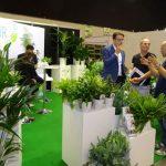 Rośliny doniczkowe na Flower Expo Polska pokazali m.in. Holendrzy (Air So Pure
