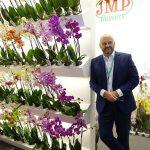 Krzysztof-Rutkowski_JMP Flowers