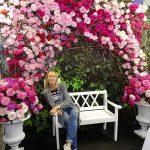 """Róże Davida Austina - popularny """"punkt fotograficzny na FlowersExpo 2018"""