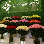 Zielionyj Dom - gospodarstwo z Federacji Rosyjskiej również produkujące róże pod osłonami