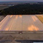 Nowa część 10-hektarowej szklarni w firmie JMP Flowers