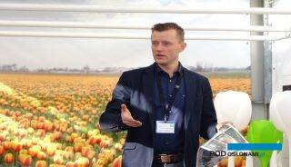 Dirk-Jan Haakman – reprezentuje trzecie pokolenie holenderskiej firmy, której działalność od 80 lat jest związana z tulipanami, fot. A. Cecot
