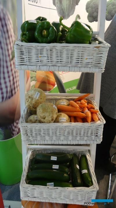Firma HM.Clause promowała warzywa przeznaczone do uprawy pod osłonami lub w polu