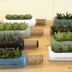 GreenBottleGarden_Myplant-and-Garden 2019