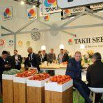 Firma Takii Seed prezenotwała szeroki asortyment odmian warzyw