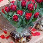 Tulipany 'Red Princess' - kwiaty z cebulami zapakowanymi w folię (z wodą) - nowy sposób oferowania tulipanów
