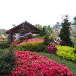 Starannie wykonany i różnorodny ogród grupy Kapias