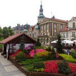 Starannie wykonany i różnorodny ogród grupy Kapias_Daisy Days 2019_Pszczyna