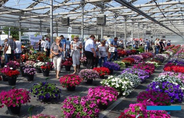 Dni Otwarte firmy Plantpol z Zaborza k. Oświęcimia, organizowane co 2 lata, odwiedzane są przez ponad 1500 osób