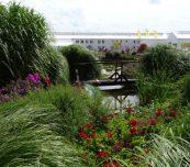 W naturalnej scenerii otoczenia firmy Volmary w Gawartowej Woli zaprezentowano kilkaset odmian roślin do uprawy na balkonach i w ogrodach oraz na terenach zieleni, fot. A. Cecot