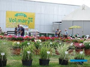 Dni Otwarte firmy Volmary Sp. z o.o. w 2019 zbiegły się z jubileuszem 20-lecia tej spółki