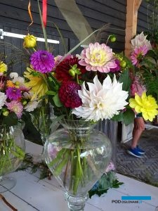 Holland Dahlia Event_2019