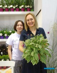 Katarzyna Radzis z córką Małgorzatą i jedna z nowości w ofercie jej szkółki: Knautia 'Thunder and Lightning'_Zielen to Zycie 2019