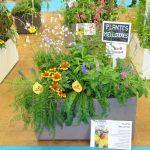 """Jeden z przykładowych zestawów z działu targów nazwanego """"Pixel Garden"""", zawierający rośliny przyjazne pszczołom _Salon du Vegetal 2019"""