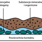 Biofilm wraz z zanieczyszczeniami organicznymi i mineralnymi
