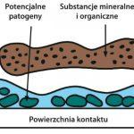 W pierwszej kolejności usuwane są zanieczyszczenia mineralne i organiczne, biofilm jest usuwany na kolejnym etapie