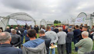 Rejon Potworowa słynie z uprawy Papryki, o czym świadczy duża liczba przybyłych producentów, fot. Rijk Zwaan