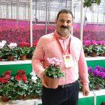 Abdullah-Okul_Gaye Süs Bitkileri_Cyclamen-Super Serie-Verano_Flower-Show-Istanbul 2019