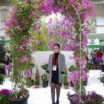 Berisu-Oguz_Seraflora_Bougainvillea__Flower-Show-Istanbul 2019