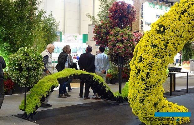 Międzynarodowe targi Flower Show Istanbul / Eurasia Plant Fair odbyły się po raz 11. w Stambule