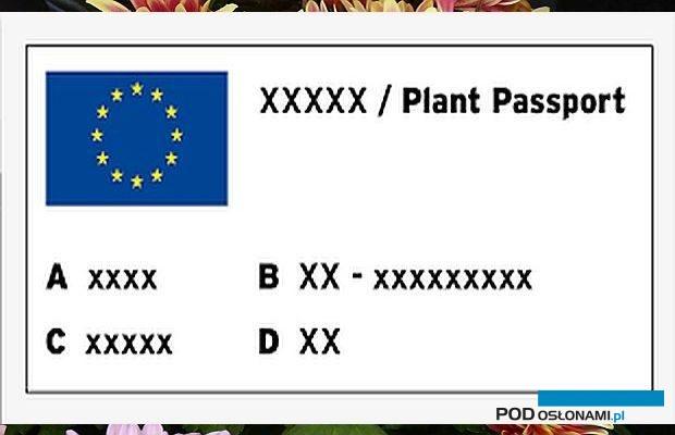Przykładowy wzór paszportu roślin