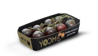 Yoom - minipomidory o podwyższonej zawartości związków prozdrowotnych, nadające się do zróżnicowanych warunków uprawowych