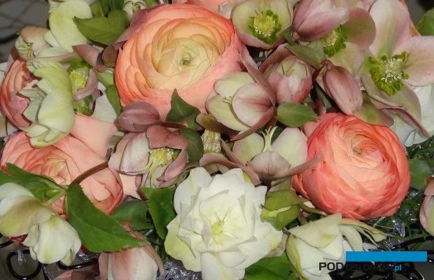 Konkurs dla Kwiaciarń będzie jedną z atrakcji targów Special Days w Poznaniu