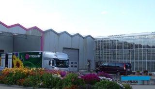 Vitroflora w ostatnich paru latach unowocześniła infrastrukturę i powiększyła areał uprawowy w gospodarstwie w Trzęsaczu, które specjalizuje się w produkcji materiałów wyjściowych, sprzedawanych do wielu krajów, fot. A. Cecot