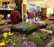 Targi IPM Essen, jak zwykle otworzyły wiosenny sezon w międzynarodowej branży roślin ozdobnych