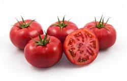 Pomidory malinowe i wielkoowocowe czerwone - nowe odmiany (relacja z webinarium)