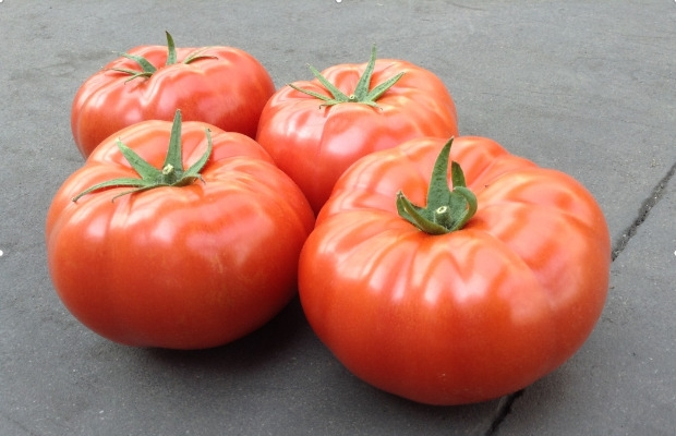 Nowy pomidor wielkoowocowy DRTH5024