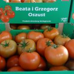 Pomidor Barteza