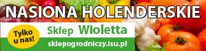 Sklep Wioletta 2020