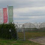 Plantacja OVOC Farma Owocowa