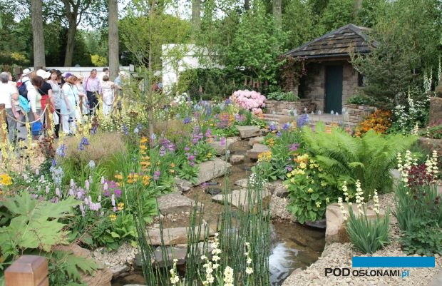 Chelsea Flower Show (wiosenna edycja sprzed paru lat), fot. A. Cecot