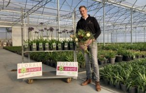 Tim Wyckstandt odebrał srebrny medal za agapant 'Poppin' Purple' w konkursie o Florall Award, podczas targów, które odbyły się 2 marca 2021 roku online, fot. Florall
