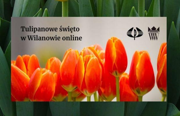 Tulipanowe swieto w Wilanowie online 2021
