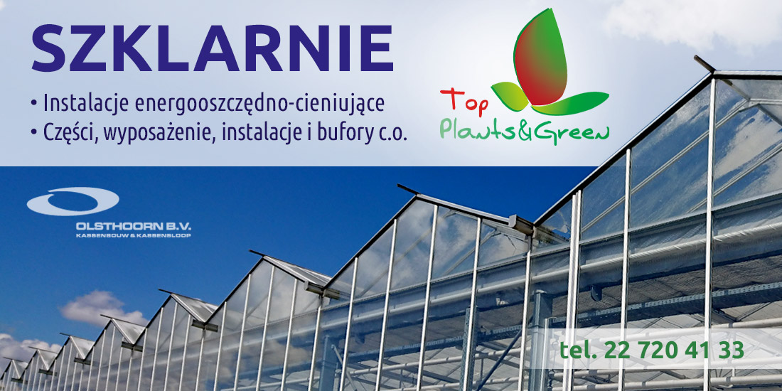 Top Plants
