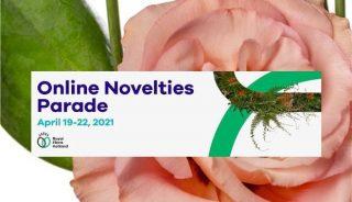 Online Novelties Parade - promocja nowości kwiaciarskich, fot. RFH